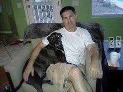 Sadie the Lap Dog